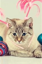 Preview iPhone wallpaper Blue eyes cat and colorful balls