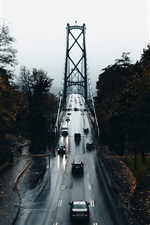 Preview iPhone wallpaper Bridge, wet, road, cars, trees, autumn