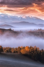 Preview iPhone wallpaper Carpathians, mountains, trees, fog, morning, autumn