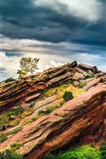 Preview iPhone wallpaper Colorado, USA, red rocks, tree, clouds, dusk