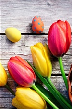 Colorful eggs and tulip flowers, Happy Easter