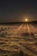 Preview iPhone wallpaper Dartmoor National Park, Stone Circle, grass, sunrise, UK