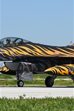 Fighting Falcon F-16C fighter