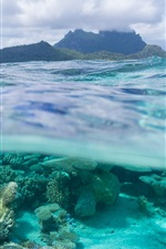 Preview iPhone wallpaper French Polynesia, Leeward Islands, Bora Bora, corals, sea, underwater