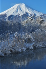 Preview iPhone wallpaper Fuji mountain, snow, winter, trees, river, Japan