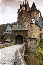 Germany, ELTZ castle, gate, forest