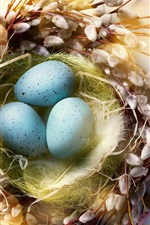 미리보기 iPhone 배경 화면 행복한 부활절, 깃털, 계란, 나뭇 가지, 둥지