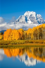 Preview iPhone wallpaper Lake, trees, mountains, autumn, USA, Grand Teton National Park