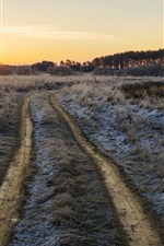 Preview iPhone wallpaper Morning, grass, path, pond, frost, sunrise