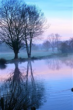 Preview iPhone wallpaper Morning, trees, lake, duck, fog