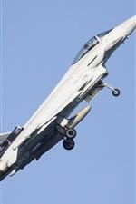 미리보기 iPhone 배경 화면 다목적 전투기 비행