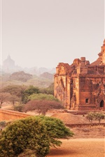 Preview iPhone wallpaper Myanmar, Bagan, temples, horse cart, dry, road, dust, trees