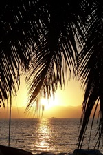 Preview iPhone wallpaper Palm trees, boats, morning, sunrise, Lake Malawi