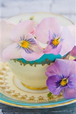 Preview iPhone wallpaper Pansy flowers, cup, saucer
