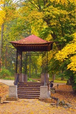 Preview iPhone wallpaper Park, autumn, trees, gazebo, yellow leaves