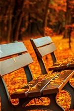미리보기 iPhone 배경 화면 공원, 벤치, 붉은 단풍, 길, 가을