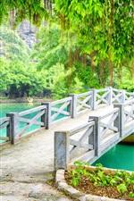미리보기 iPhone 배경 화면 공원, 다리, 나무, 호수, 베트남