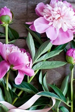 Pink peonies, flowers, wood board