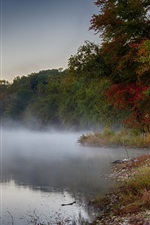 Preview iPhone wallpaper Pond, fog, trees, morning