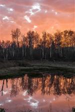 Lagoa, árvores, céu vermelho, crepúsculo