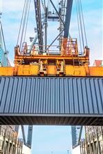 Port, container, hoist