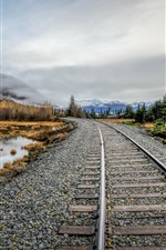 Railroad, stones, lake, trees, fog, autumn