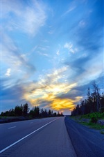 Preview iPhone wallpaper Road, evening, trees