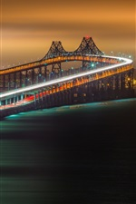 Preview iPhone wallpaper Rollercoaster bridge, night, city, river