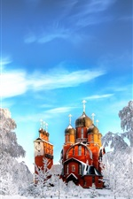 Preview iPhone wallpaper Saint Petersburg, temple, winter, snow, trees