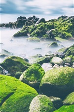 Preview iPhone wallpaper Sea, stones, moss, clouds, nature