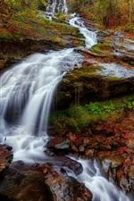 iPhone壁紙のプレビュー 斜面、滝、木々、秋