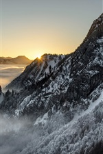 Preview iPhone wallpaper Snow mountains, trees, fog, sunrise