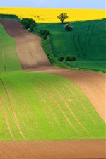 South Moravian region, Czech Republic, beautiful fields, road