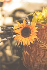 Preview iPhone wallpaper Sunflowers, bike