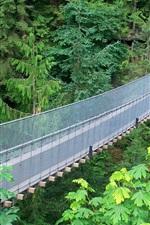 Preview iPhone wallpaper Suspension bridge, metal mesh, green jungle