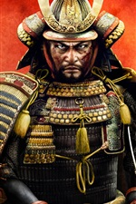 Guerra total: Shogun 2