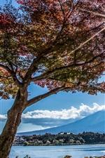 Trees, lake, Fuji mountain, sun rays, Japan