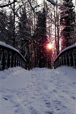 Preview iPhone wallpaper Winter, bridge, trees, thick snow, sunset