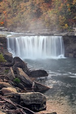 Preview iPhone wallpaper Autumn, forest, trees, waterfall, fog, USA