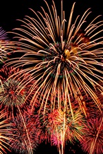 Preview iPhone wallpaper Beautiful fireworks, night, black sky