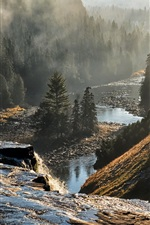Preview iPhone wallpaper Canada, Ontario, trees, mountains, fog, river, morning