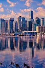 Canada, Vancouver, lake, water, ducks, skyscrapers, city