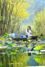 China, countryside, boat, girl, pond, lotus, trees