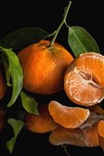 Citrus, black background