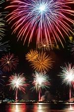 Dia da cidade, belo fogos de artifício, rio