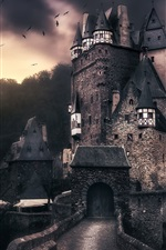 Preview iPhone wallpaper ELTZ castle, Germany, birds, clouds, dusk