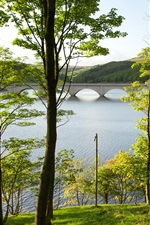 Preview iPhone wallpaper England, Derbyshire, reservoir, lake, trees, bridge