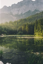 Preview iPhone wallpaper Forest, mountains, lake, fog, sun rays