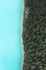 Preview iPhone wallpaper Forest, trees, lake, top view