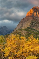Preview iPhone wallpaper Forest, trees, rock mountains, clouds, dusk, autumn